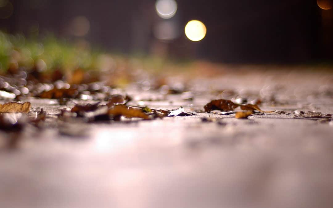 Get Ready for Fall Rains: A Quick Guide to Cleaning Your Gutters